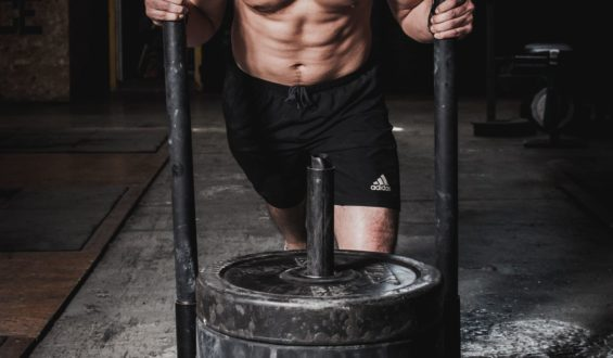 Dieta białkowa – fakty i mity